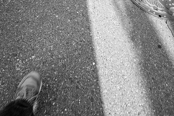 今日の散歩のお供は!_b0194208_23220281.jpg