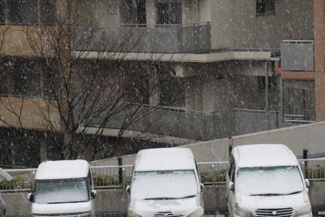季節外れの雪_e0101819_23304142.jpg