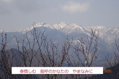 オボコンベ山~桐ノ目山_e0265627_11511474.jpg