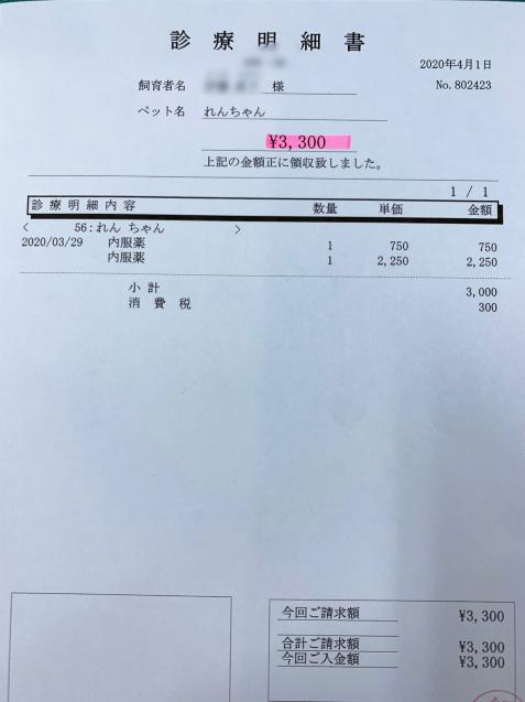 れんちゃん医療費のご報告_d0355333_11554252.jpg