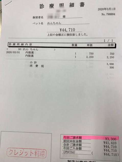 れんちゃん医療費のご報告_d0355333_11555107.jpg