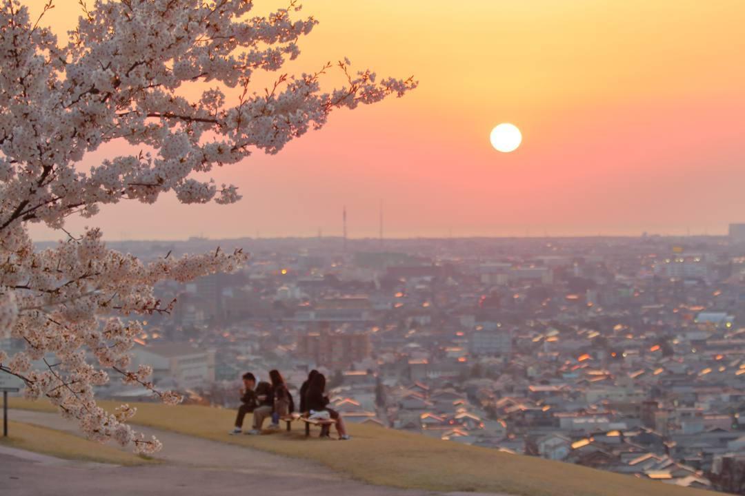 桜 2020_e0403850_09514948.jpg