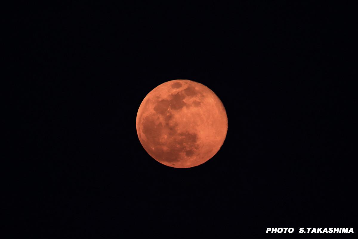 今日の月_b0368378_21233788.jpg