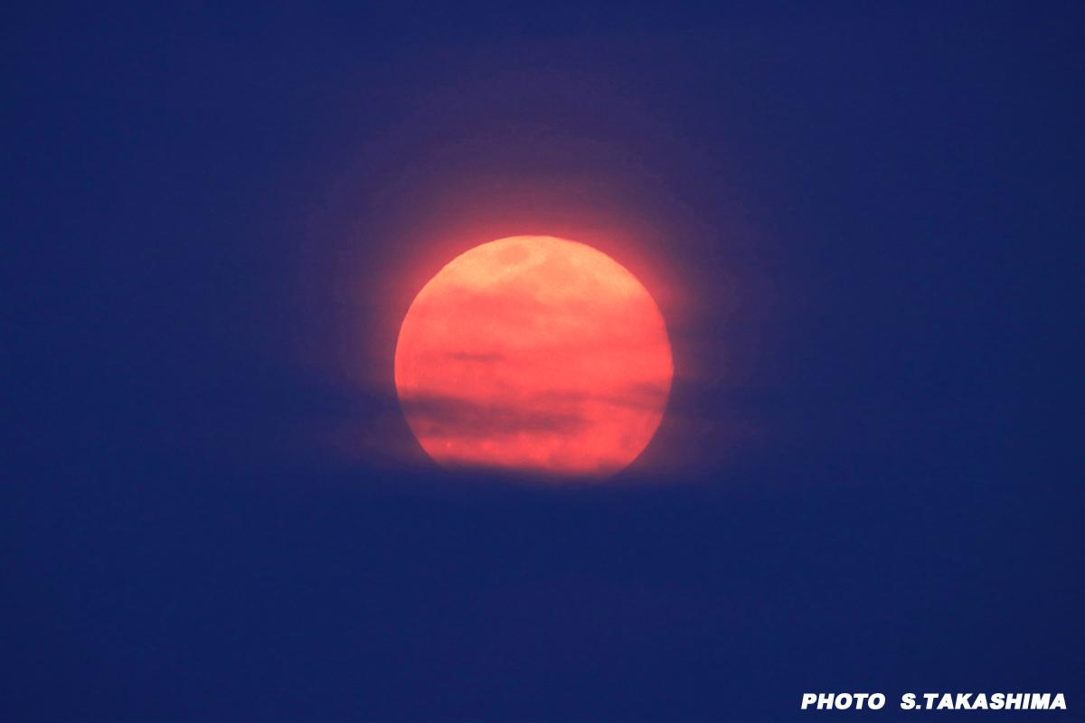 今日の月_b0368378_21253043.jpg