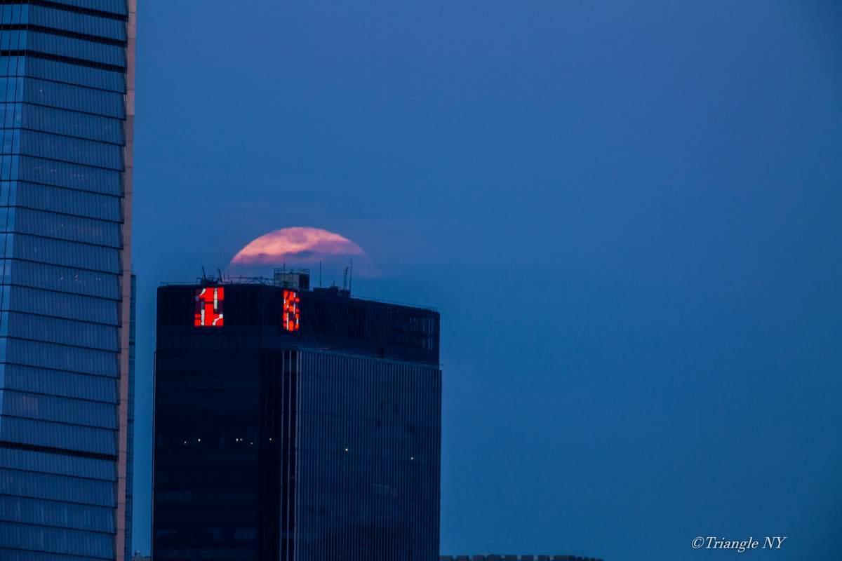 Second Super Moon in April 7 2020 -Super Pink Moon- 〈記録〉_a0274805_05195490.jpg