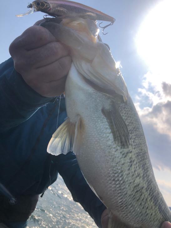 魚を浮かすべし!_e0100021_21265466.jpg
