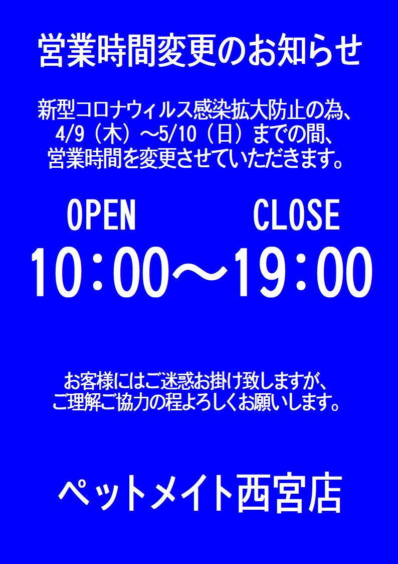 200408 熱帯魚 金魚 水草_f0189122_09541100.jpg