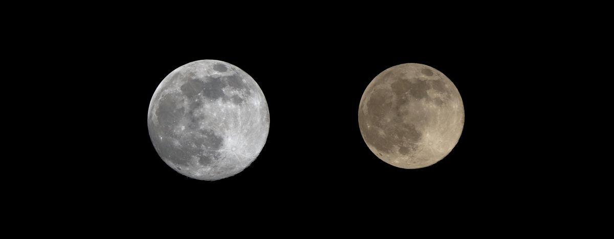 Super Moon 2020_b0184848_12573598.jpg