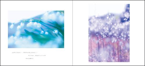 はるひ 写真集『癒やしの雫』4月9日発売!_c0142549_20502785.jpg