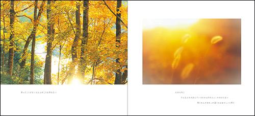 はるひ 写真集『癒やしの雫』4月9日発売!_c0142549_20511235.jpg