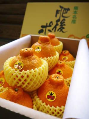 究極の柑橘「せとか」 令和2年出荷予定分はいよいよ残りわずか!ご注文はお急ぎください!_a0254656_13553691.jpg