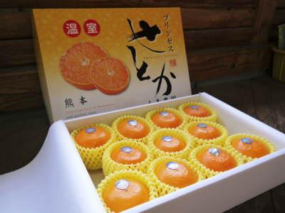 究極の柑橘「せとか」 令和2年出荷予定分はいよいよ残りわずか!ご注文はお急ぎください!_a0254656_14363507.jpg