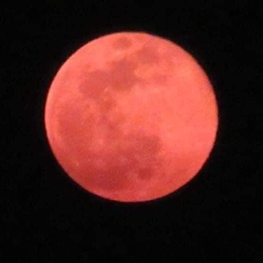 聖木曜日の前の晩。。。Pink supermoonが世界を照らしました。。。☆*+☆*+☆*..._a0053662_11275014.jpg