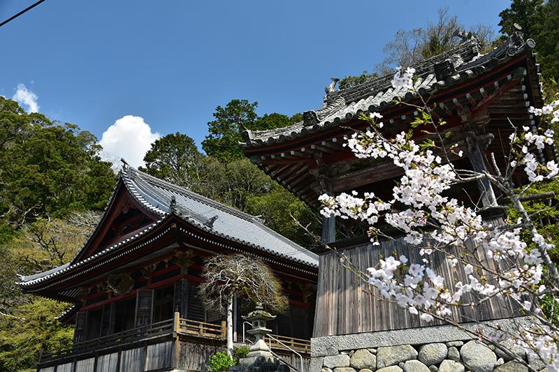 和歌山街道を行く_e0164563_15384867.jpg