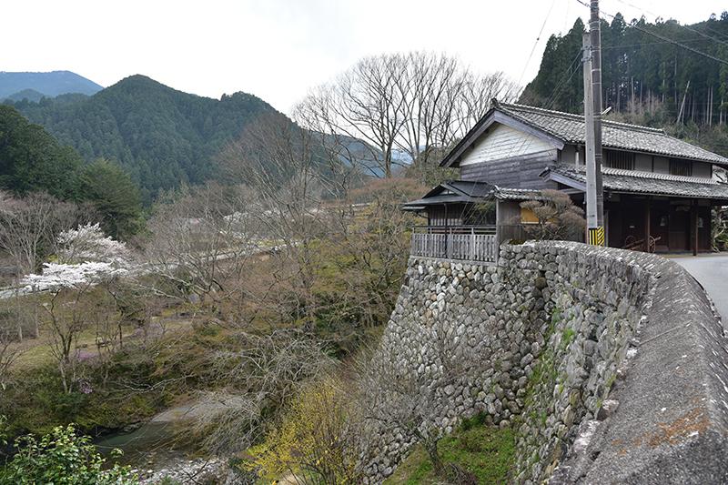 和歌山街道を行く_e0164563_15391052.jpg