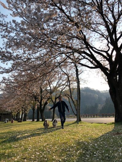 子犬とにゃんこ_f0126965_15455924.jpg