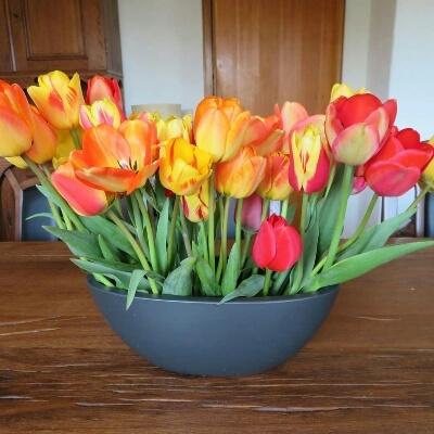 新しい花瓶にチューリップ_c0211876_03063829.jpg