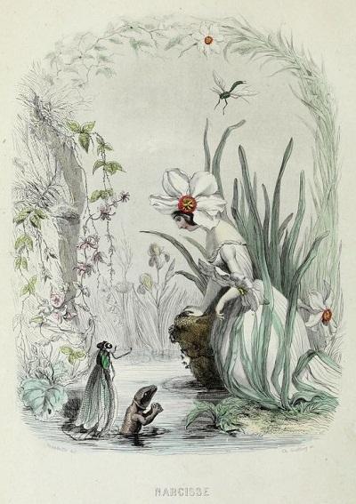 J・J・グランヴィル:Les fleurs animées_c0084183_14154200.jpg
