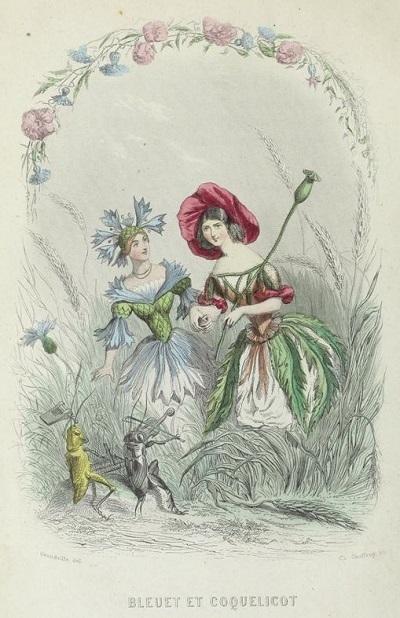 グランヴィルの「花の幻想」の素描:ナンシー市立図書館蔵_c0084183_14155880.jpg