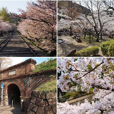 三男カップル情報【蹴上インクライン】来年の桜を見に行きたい♡_f0249610_11362469.jpg
