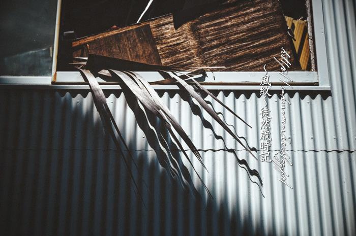 崩壊する窓辺。_f0235723_16235402.jpg