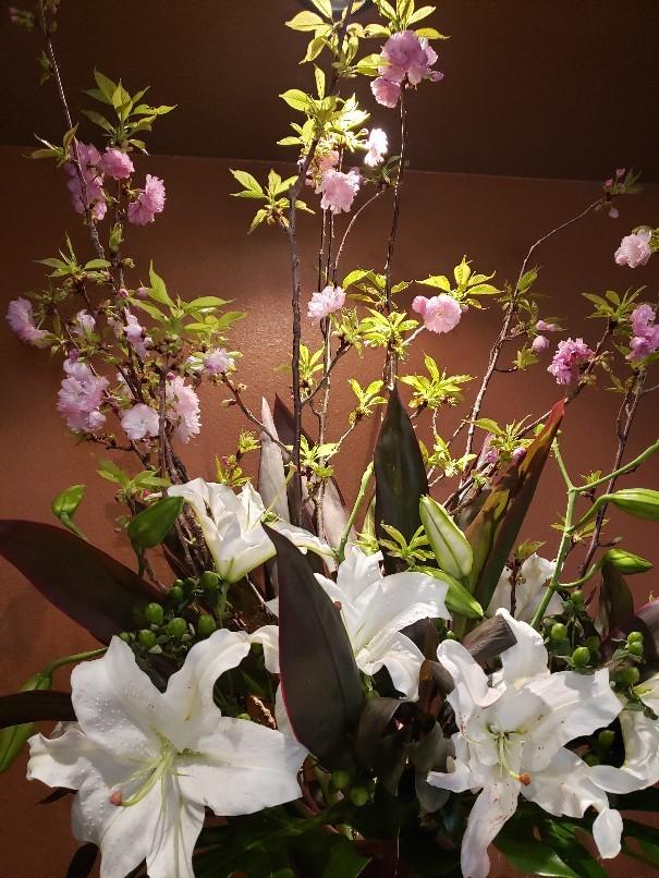 お花見気分を_c0119937_20033354.jpg