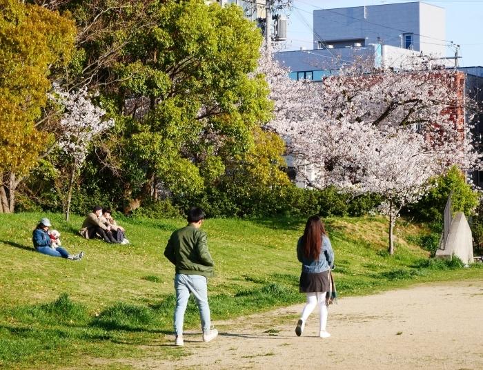 街の公園にて  2020-04-11 00:00   _b0093754_20423280.jpg