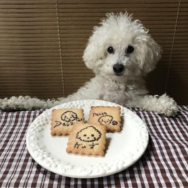おうち時間に・・わんこのプリントクッキー♡_e0141159_17095094.jpg
