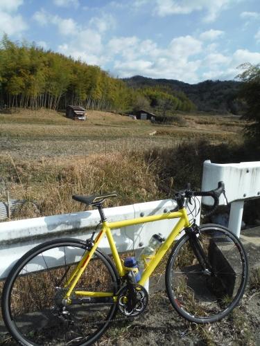 朝サイクリングなら・・・_b0332867_21490502.jpg