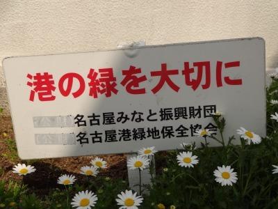 名古屋港水族館前花壇の植栽R2.4.8_d0338682_15412706.jpg
