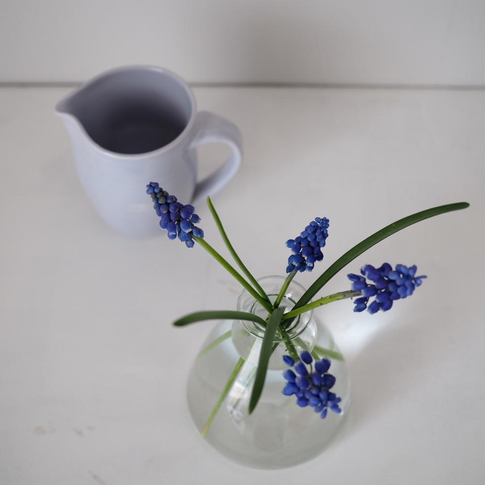 花を挿す_b0206421_11571571.jpg