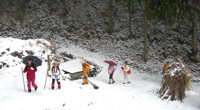 雪の千本峠を越えて三坂峠から松山へ_f0213825_08263970.jpg