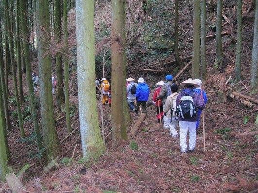雪の千本峠を越えて三坂峠から松山へ_f0213825_08381387.jpg
