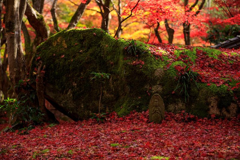 紅葉が彩る滋賀2019 教林坊・秋の大団円_f0155048_2140219.jpg