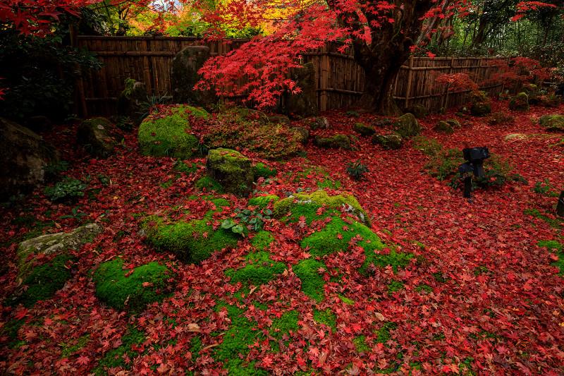 紅葉が彩る滋賀2019 教林坊・秋の大団円_f0155048_21493991.jpg