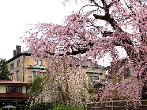 「足袋」に誘われた京の旅。_b0141773_23220354.jpg
