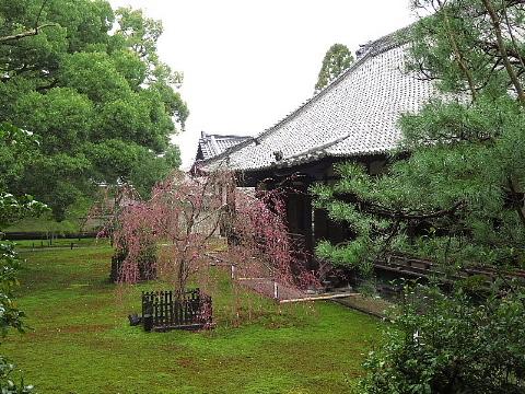 「足袋」に誘われた京の旅。_b0141773_23230003.jpg