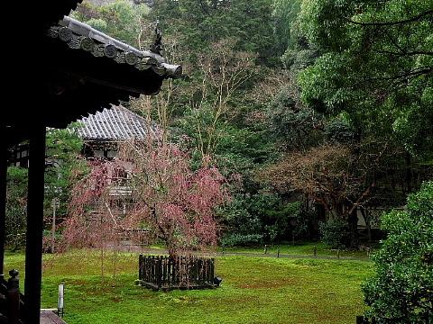 「足袋」に誘われた京の旅。_b0141773_23405896.jpg