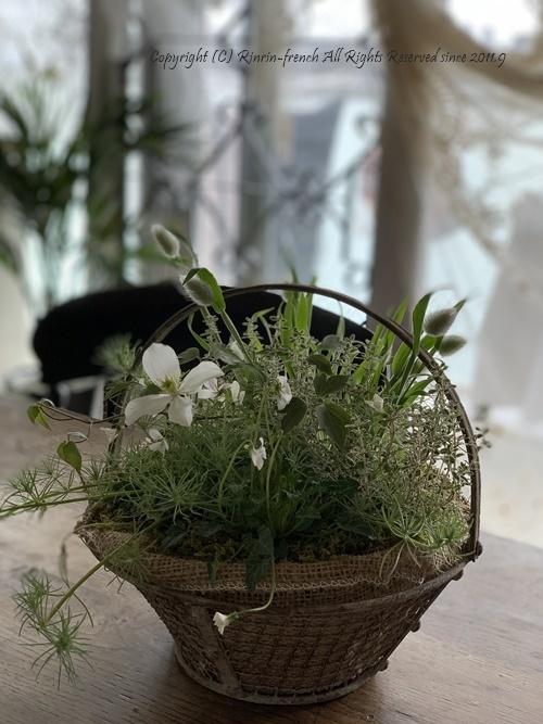 お花まみれの一日♪_e0237680_15354574.jpg
