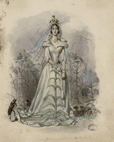 グランヴィルの「花の幻想」の素描:ナンシー市立図書館蔵_c0084183_12144920.jpg