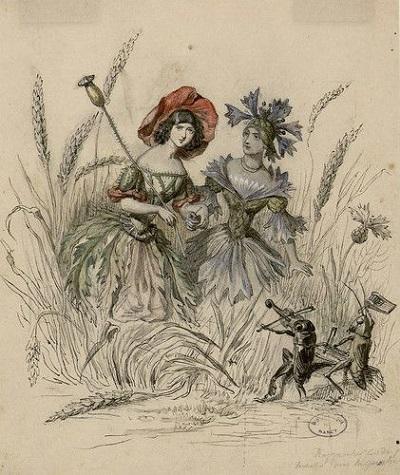 グランヴィルの「花の幻想」の素描:ナンシー市立図書館蔵_c0084183_12145357.jpg