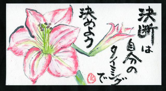 楽をして花を咲かせる_f0346196_11162643.jpg