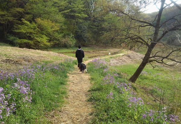 里山散歩_d0224111_15082253.jpg