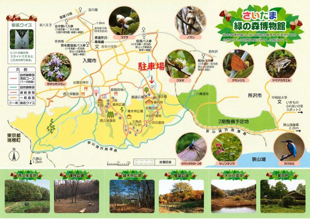 里山散歩_d0224111_15124254.jpg