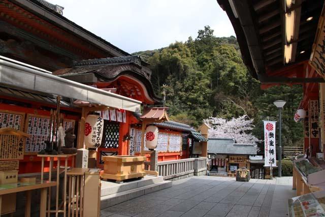 地主神社_e0048413_21010610.jpg