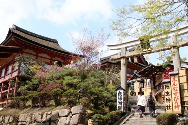 地主神社_e0048413_21011810.jpg