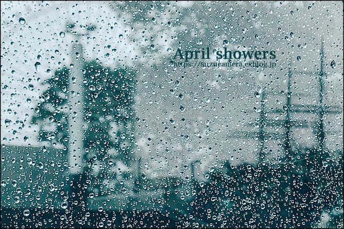 4月の雨は_f0100215_23270904.jpg