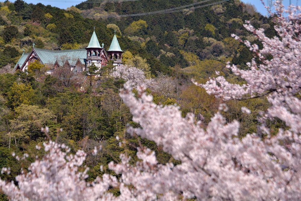 入鹿池端の桜と聖ヨハネ教会堂_e0373930_16255528.jpg