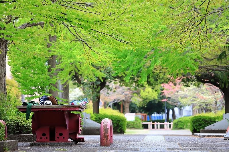 近所の春(1)_f0348831_21094717.jpg