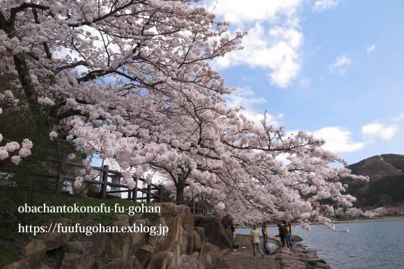 イースターのおうちバル&琵琶湖の桜散歩_c0326245_11385119.jpg